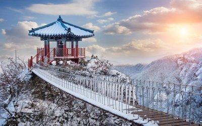 Đi du lịch Nhật Bản mùa đông ngắm tuyết rơi